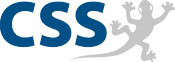 CSS Management und Strategie - Logo