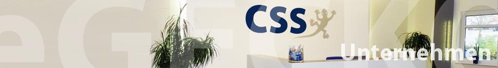 CSS - Rechnungswesen